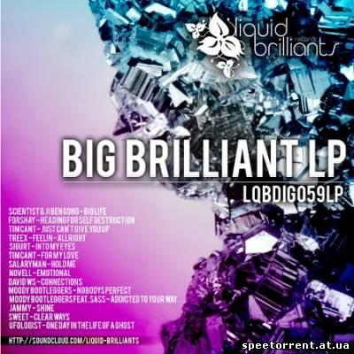 VA - Big Brilliant LP (2011) MP3